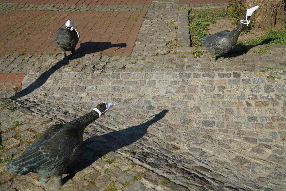 Gänse Skulpturen mit Mundschutz 1