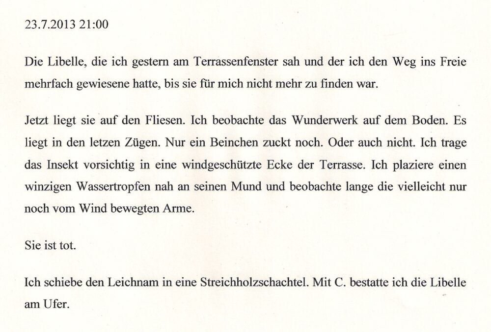 Wolfgang Herrndorf, Libelle, Blog Arbeit und Struktur