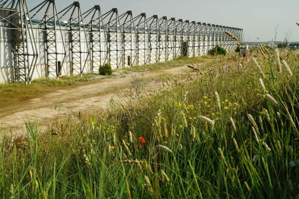 Matera leer stehende Kompostierhalle
