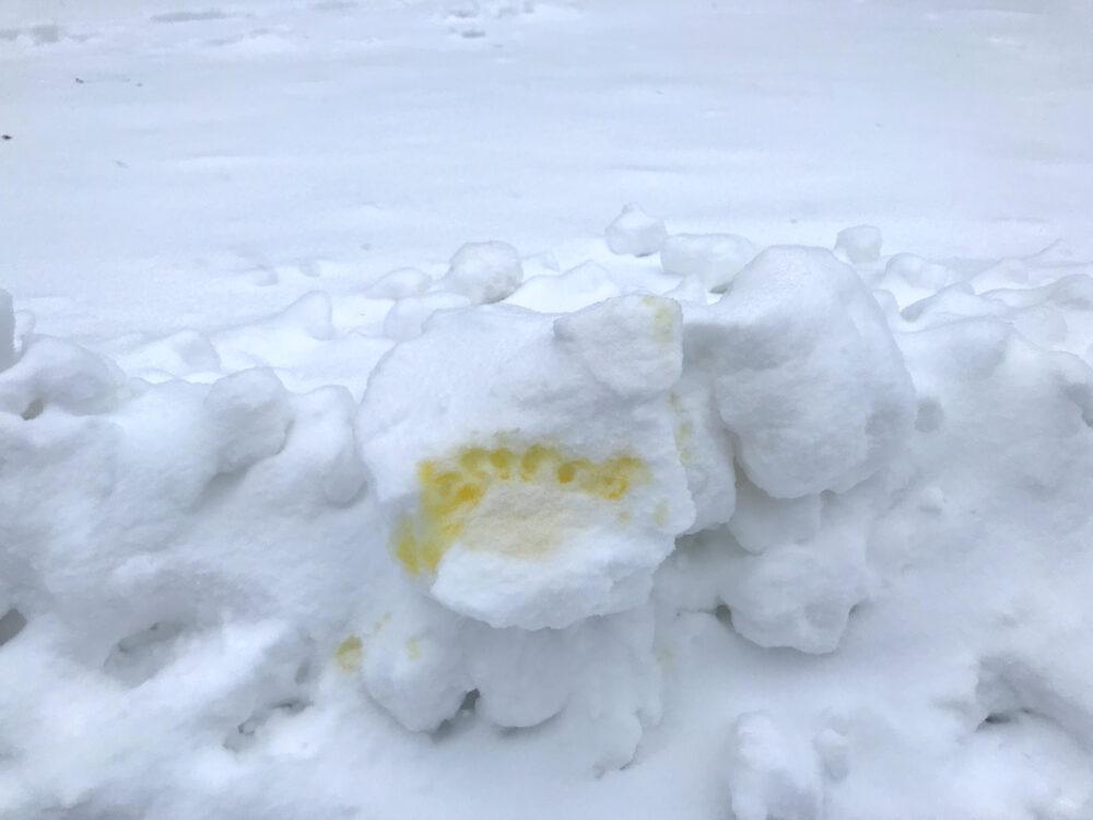 Hundepisse im Schnee