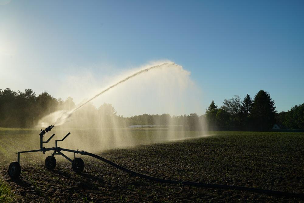 Westmünsterland Wassersprenger auf Feld
